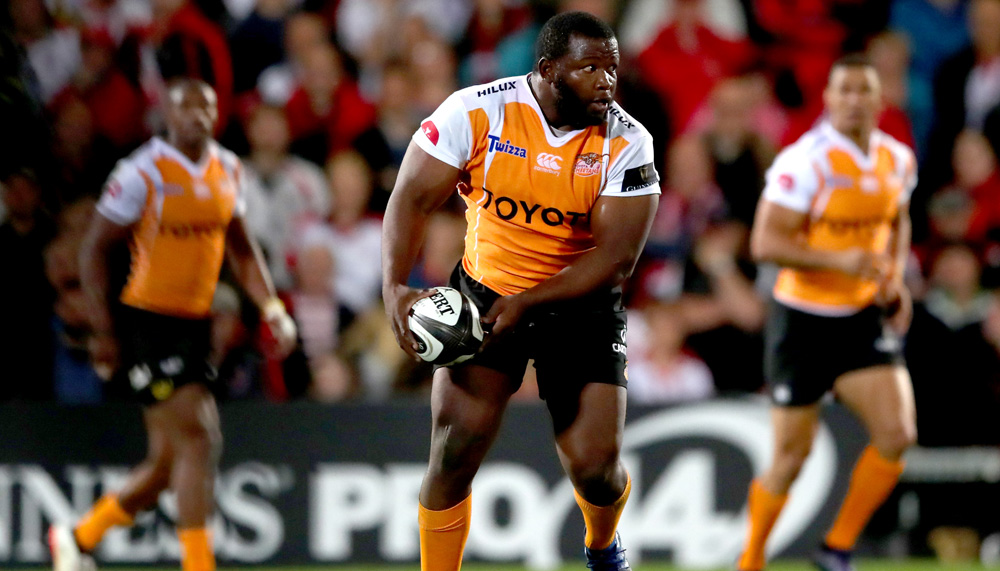 Kings and Cheetahs represent South Africa in Pro14 - Sports Leo