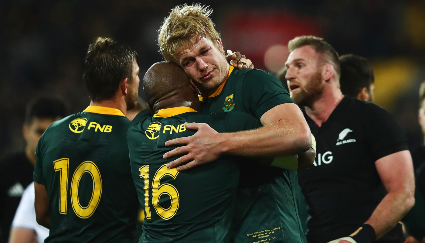 Springboks embrace lessons in New Zealand defeat - Sports Leo