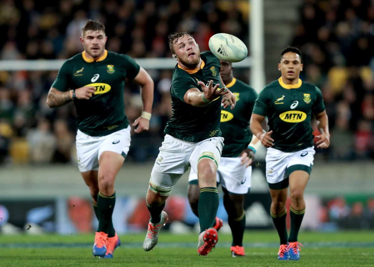 Springboks praise Namibia ahead of Rugby World Cup clash - Sports Leo