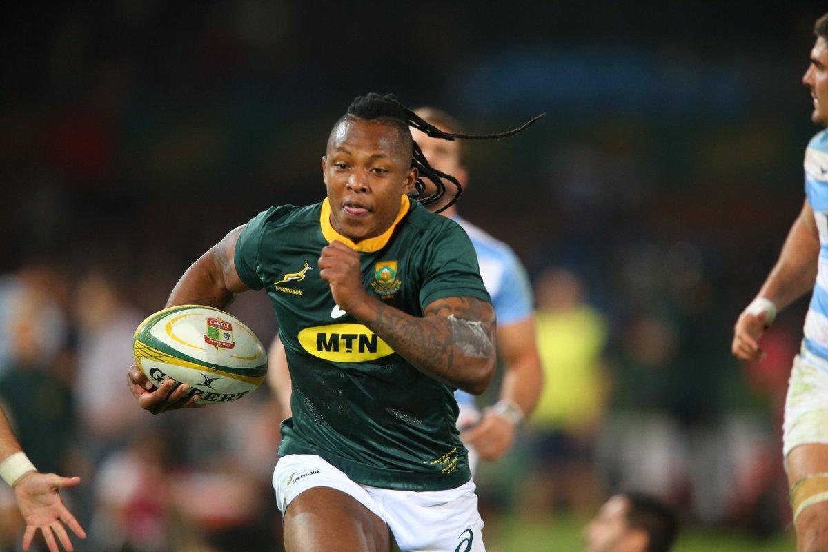 Springbok Sbu Nkosi in for injured winger Cheslin Kolbe - Sports Leo