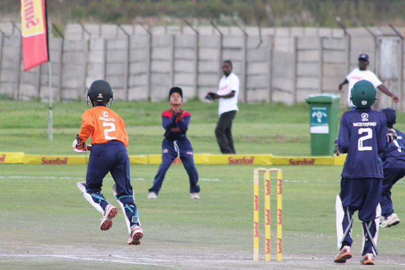 Cricket development in Gauteng receives transport boost - Sports Leo