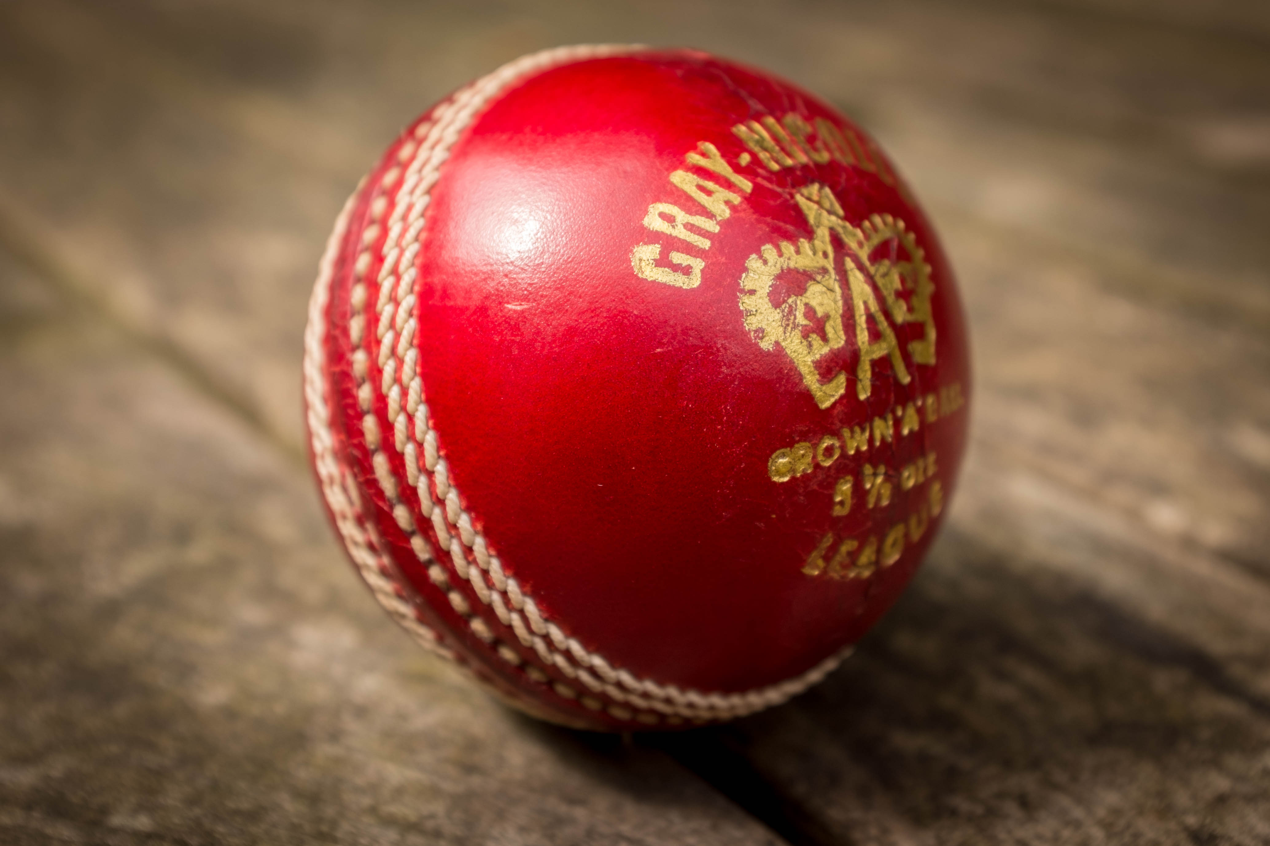 Cricket SA appoint new independent non-executive directors - Sports Leo