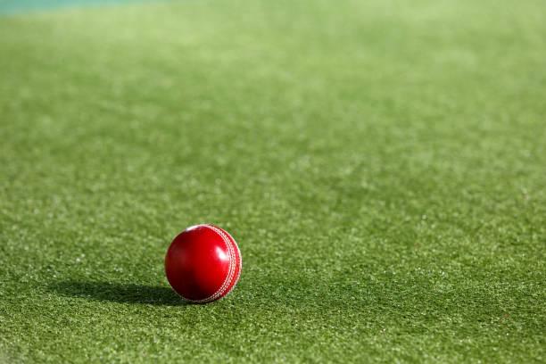 Northern Cape Cricket announce squad for new season - Sports Leo