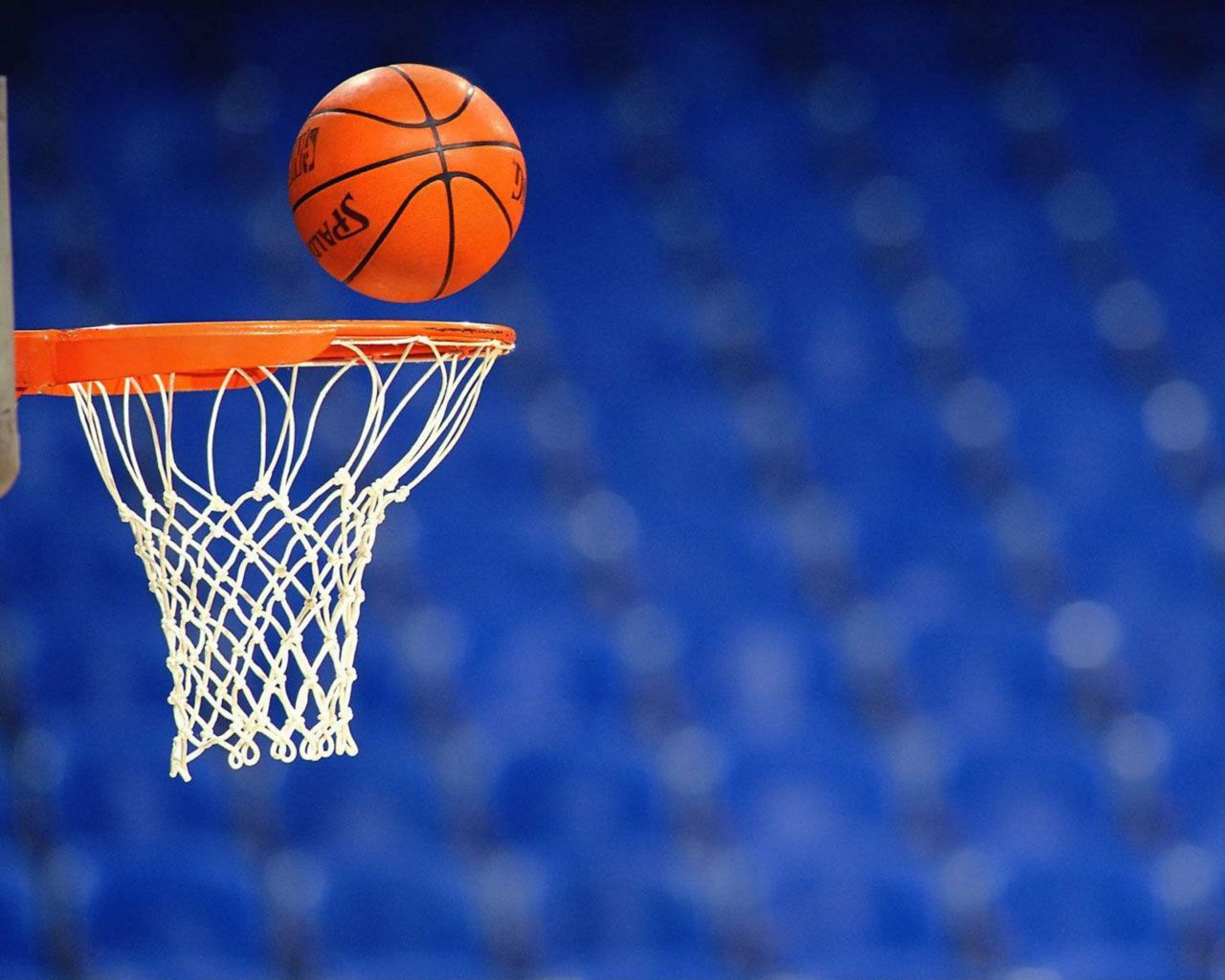 Egypt Basketball Federation to resume action on August 15 - Sports Leo