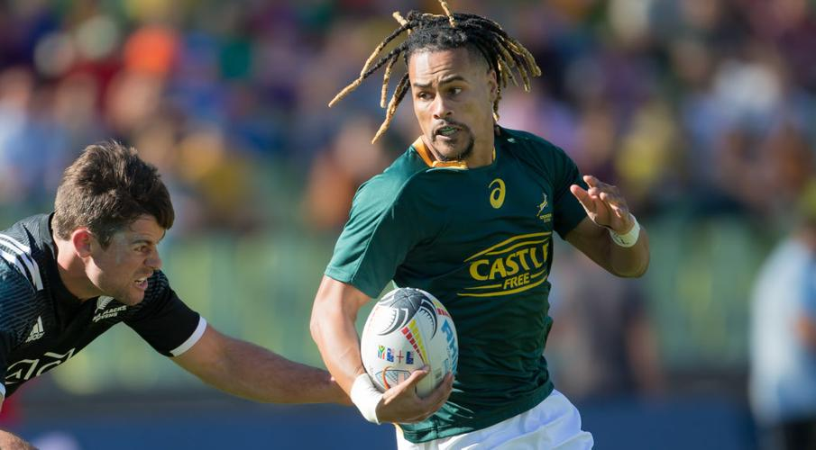 Davids duo left at the summit of Blitzbok scoring charts - Sports Leo