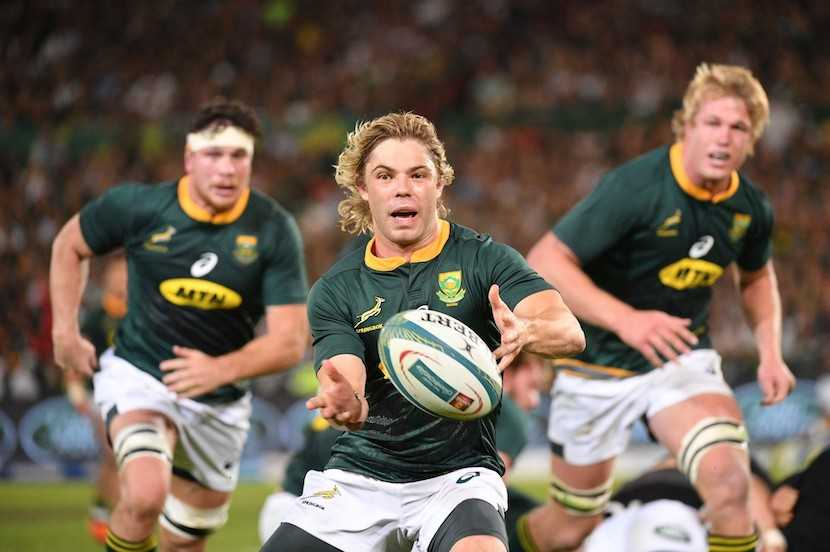 Springbok Showdown scheduled to kick-off on October 3 - Sports Leo