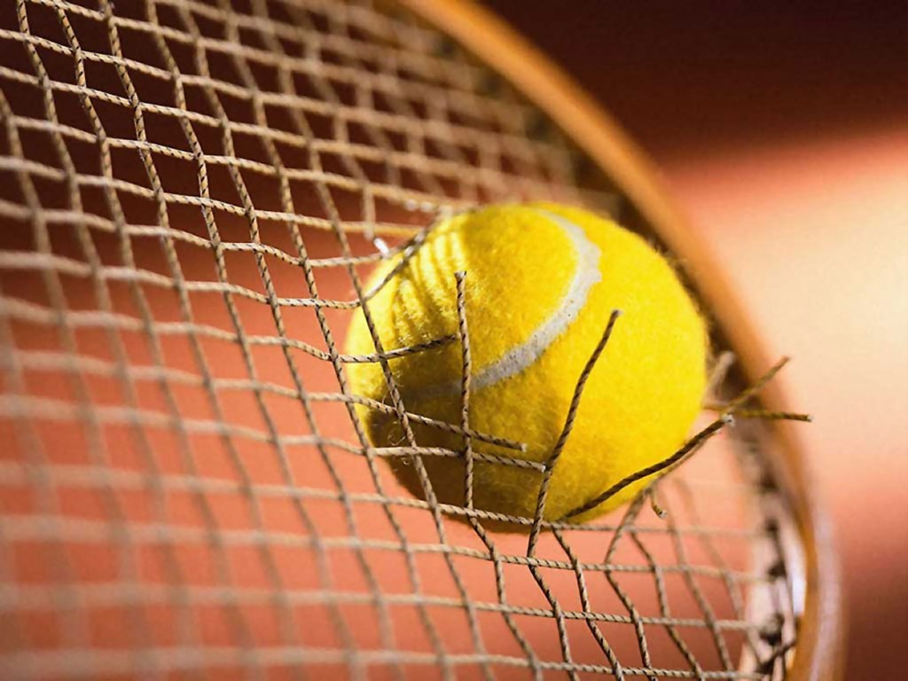 SA's Anderson, Harris reach second round of French Open - Sports Leo